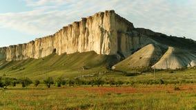 Vista lateral de prados verdes con muchas flores rojas delante de la alta montaña tiro Aturdir el campo de la amapola cerca del a fotos de archivo
