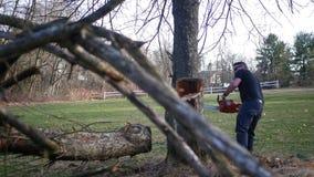 Vista lateral de un tronco de árbol que es trabajado encendido por el trabajador de construcción con la motosierra metrajes