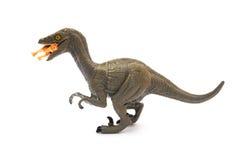Vista lateral Deinonychus que morde um dinossauro menor no fundo branco fotografia de stock