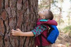Vista lateral del árbol del abarcamiento del muchacho Fotografía de archivo