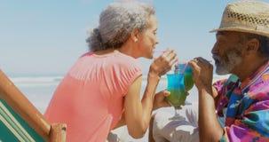 Vista lateral del cóctel de consumición de los pares afroamericanos mayores activos en deckchair en la playa 4k almacen de video