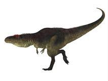 Vista lateral del dinosaurio de Tyrannotitan Fotos de archivo libres de regalías