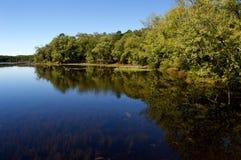 Vista lateral del lago con el cielo azul claro Imágenes de archivo libres de regalías
