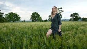 Vista lateral del ?ngulo bajo Una muchacha rubia joven en un vestido verde flojo camina sin prisa a lo largo de un campo del trig almacen de metraje de vídeo