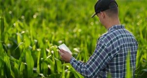 Vista lateral del plan medio: Granjero de sexo masculino con la tableta que examina las plantas en el campo y las prensas sus fin metrajes