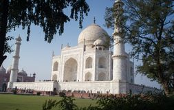 Vista lateral del Taj Mahal vista detrás de árboles Foto de archivo