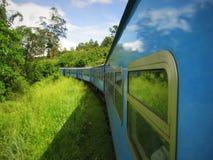 Vista lateral del tren en rural con los couds Foto de archivo libre de regalías