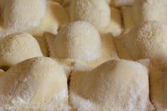 Vista lateral do ravioli caseiro italiano imagem de stock
