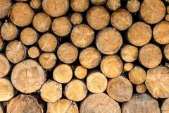 Vista lateral nos logs da madeira do fogo empilhados imagem de stock