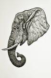 Vista laterale capa dell'elefante illustrazione di stock