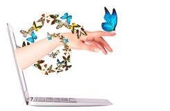 Vista laterale del computer portatile con la farfalla a disposizione Fotografia Stock