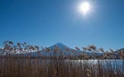 Vista laterale del lago della montagna Fuji, Giappone Fotografia Stock Libera da Diritti