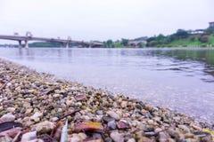 Vista laterale del lago di mattina immagini stock