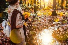 Vista laterale del mazzo femminile della tenuta delle foglie di acero gialle di autunno in sue mani gloved Terreno coperto di fog Immagini Stock