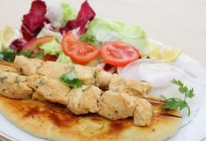 Vista laterale del pasto del kebab di tikka del pollo Immagine Stock