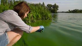 Vista laterale dell'ecologo della donna che preleva i campioni delle alghe verdi in tubo sulla riva video d archivio