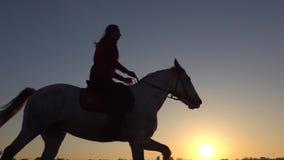 Vista laterale dell'equitazione della donna durante il tramonto Movimento lento Siluetta stock footage