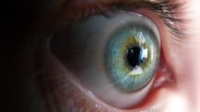 Vista laterale dell'occhio umano verde/blu Immagini Stock Libere da Diritti