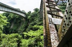 Vista laterale della costruzione del metallo di vecchio ponte ferroviario che attraversa Rio Grande Immagini Stock Libere da Diritti