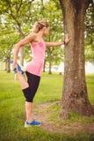 Vista laterale della donna che si esercita con l'allungamento della gamba Immagine Stock