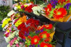 Vista laterale della stalla del fiore Fotografia Stock