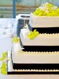 Vista laterale della torta di cerimonia nuziale della sorgente Fotografie Stock Libere da Diritti