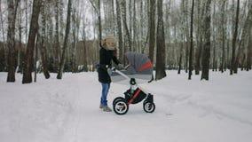 Vista laterale di giovane madre che cammina con un passeggiatore di bambino nel parco di inverno archivi video