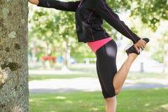 Vista laterale di una donna che allunga la sua gamba durante l'esercizio al parco Fotografia Stock Libera da Diritti