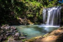 Vista laterale Oakley Creek Waterfall, Auckland, Nuova Zelanda Fotografia Stock