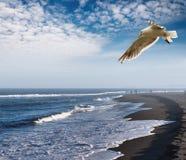 Vista litoral Fotografia de Stock Royalty Free