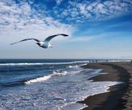 Vista litoral Imagem de Stock Royalty Free