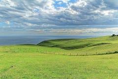 Vista litoral da parte superior do mouintain em Dunedin Fotos de Stock