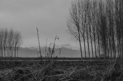 Vista lontano della montagna Fotografie Stock Libere da Diritti