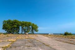 Vista a los árboles verdes del campo de aviación concreto anterior Imagen de archivo libre de regalías
