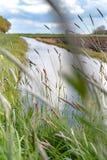 Vista lungo la diga olandese Fotografia Stock Libera da Diritti