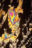 Vista macra de los cristales coloridos del ácido cítrico Imagen de archivo libre de regalías