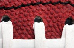 Vista macra del balompié Imagen de archivo libre de regalías