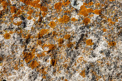 Vista macro di roccia naturale immagini stock
