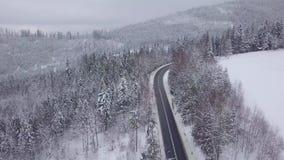 Vista maestosa della strada in montagne nevose video d archivio