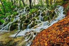 Vista maestosa di una cascata profonda della foresta un giorno autunnale soleggiato nel parco nazionale di Plitvice fotografie stock