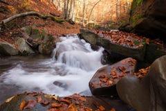 Vista magnífica da cachoeira em Autumn Beech Forest dentro fotos de stock