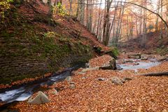 Vista magnífica da cachoeira em Autumn Beech Forest dentro imagens de stock royalty free