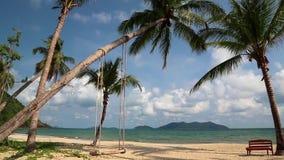 Vista magnífica del mar y de las palmas en la playa metrajes