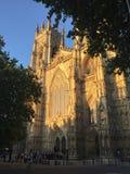 Vista magnifica di sera della cattedrale della città di York fotografie stock