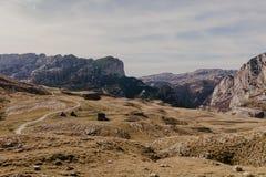 Vista maravillosa a las montañas en el parque nacional Durmitor en Montenegro, Balcanes europa Cárpato, Ucrania, Europa - Imagen imagen de archivo libre de regalías