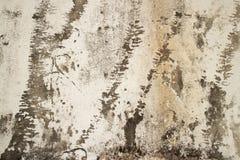 Vista media de la pared colonial del estuco en Asia con el esquema de la forma Imagen de archivo libre de regalías