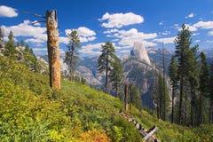 Vista mezza della cupola del Yosemite Immagine Stock Libera da Diritti