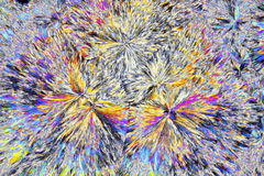 Vista microscopica dei cristalli dell'acido citrico alla luce polarizzata Fotografie Stock Libere da Diritti