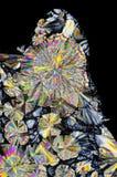 Vista microscopica dei cristalli dell'acido citrico alla luce polarizzata immagini stock libere da diritti