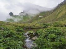 Vista misteriosa no rei e em penhascos bonitos da rainha Hornbjarg nos fiordes ocidentais, reserva natural remota Hornstrandir em Fotografia de Stock